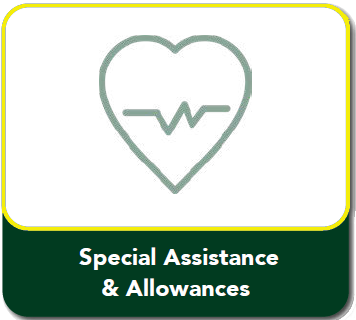 SpecialAssistance& AllowanceYellow